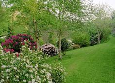 Fast Rabbit Farm Gardens, Strawberry Valley, Dartmouth, Devon 3