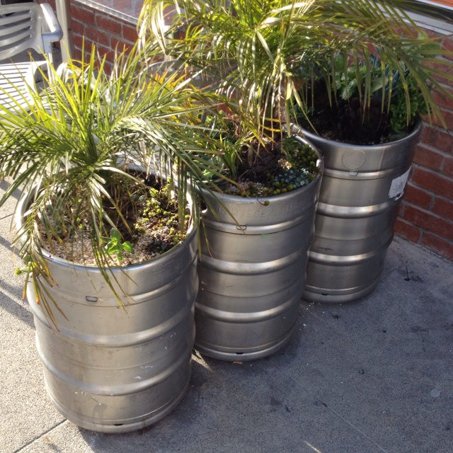 While I'd rather see kegs full of beer, kegs repurposed to be full of plants is a nice idea!