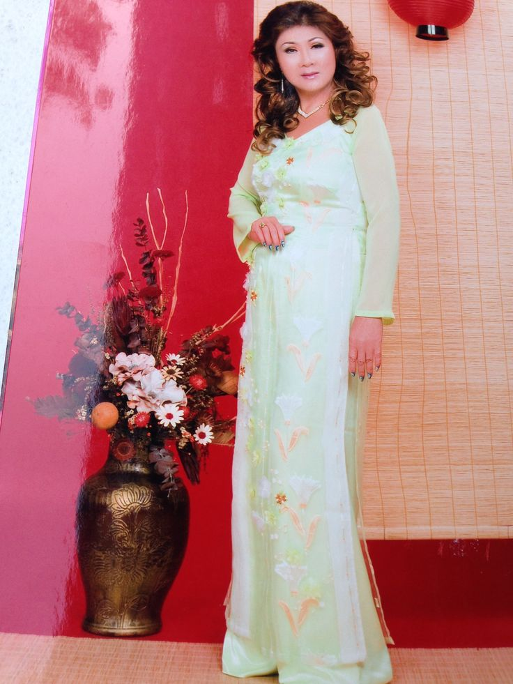 Vietnamese costume dress !
