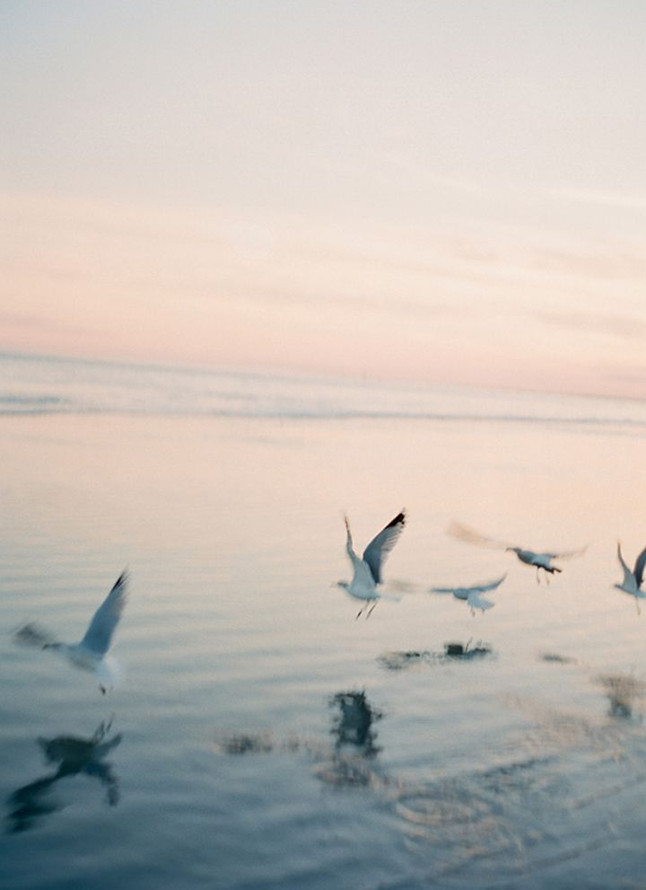 PHOTO INSPIRATION WITH SALTY WATER | 79 Ideas