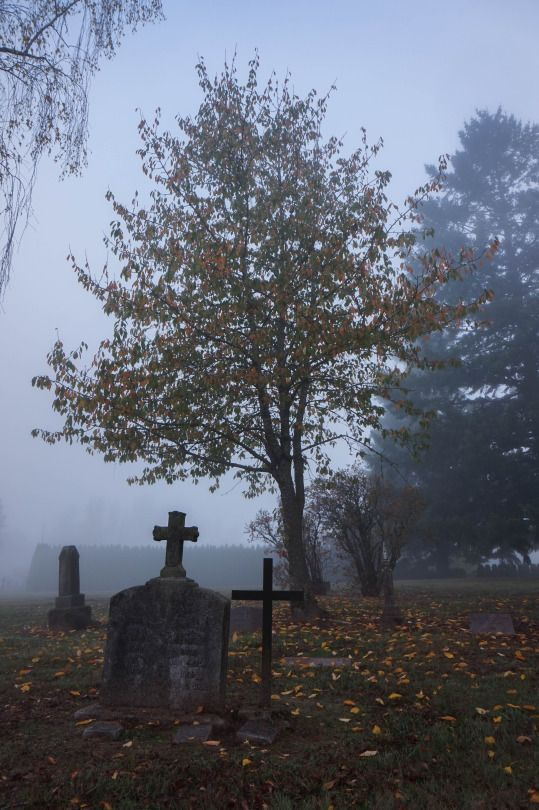 Cooper Mountain Cemetery - Oct 2015