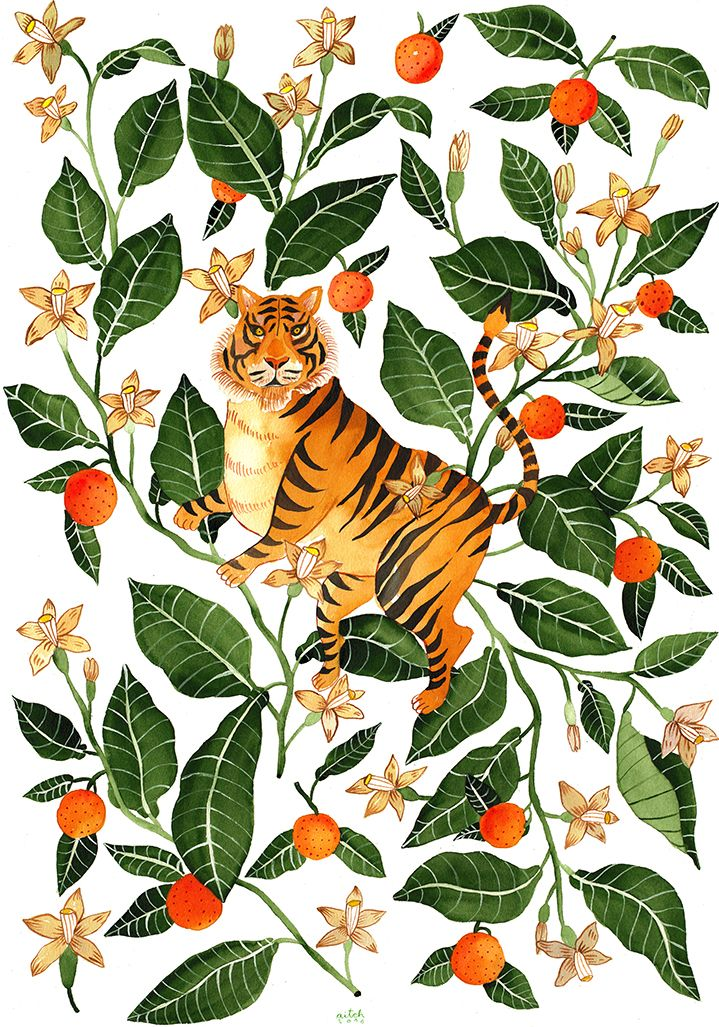 botanical, illustration, folk, modern, mural, wildlife, animals, painterly…