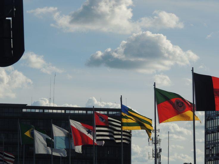 Algumas Bandeiras dos Estados Brasileiros