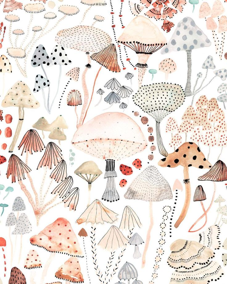 Sara Boccaccini mushrooms