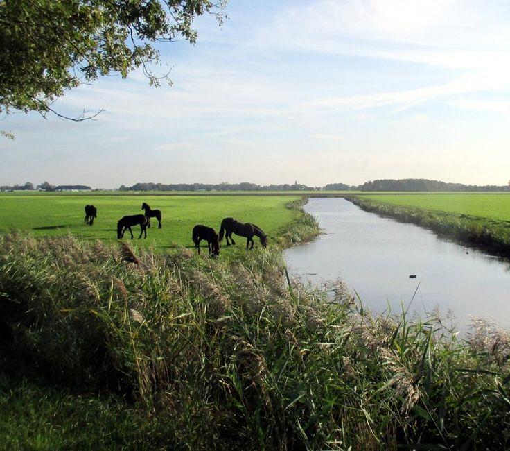 Friesland, Netherlands