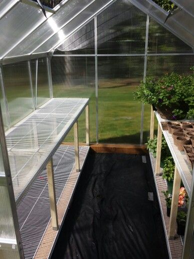 Harbor freight 6x8 greenhouse. My husband made some great shelving using closet shelves.