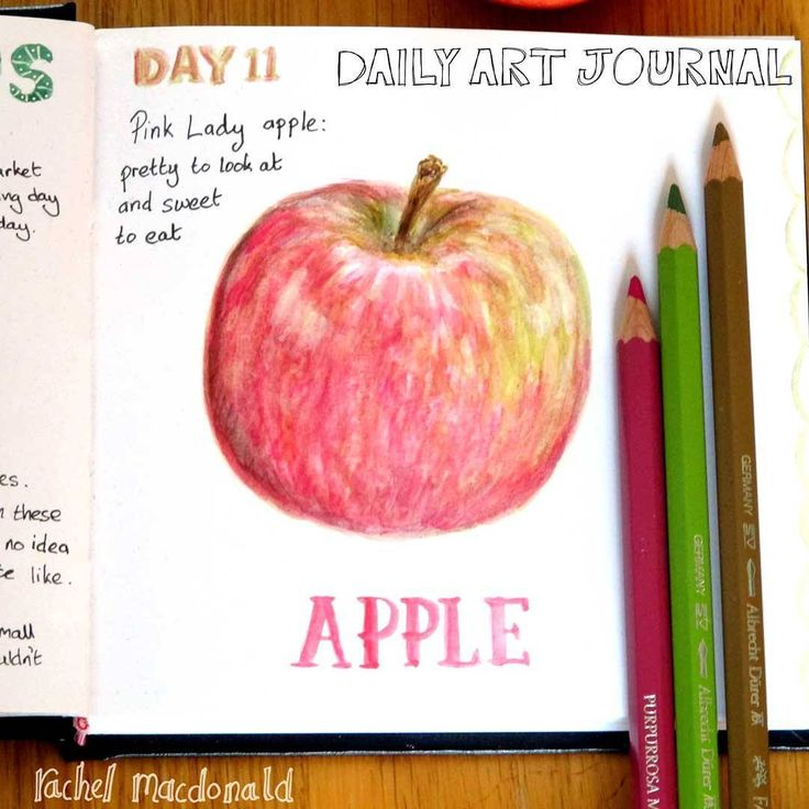 Daily Art journal - Day 11 A pink lady apple
