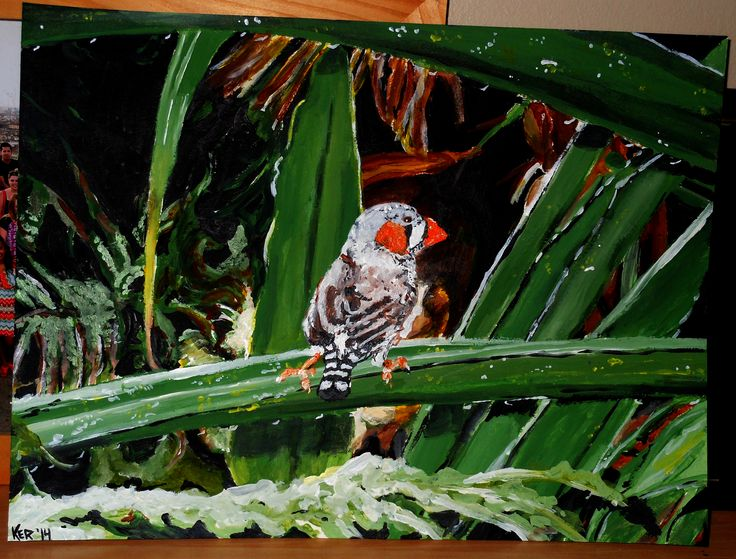 "Zebra Finch. 2014. Acrylic on thick paper. 14"" x 11"". Painting, Zebra Finch, Australia, Sydney, Birds, art, Kelsey Rempel: Artist at Play"