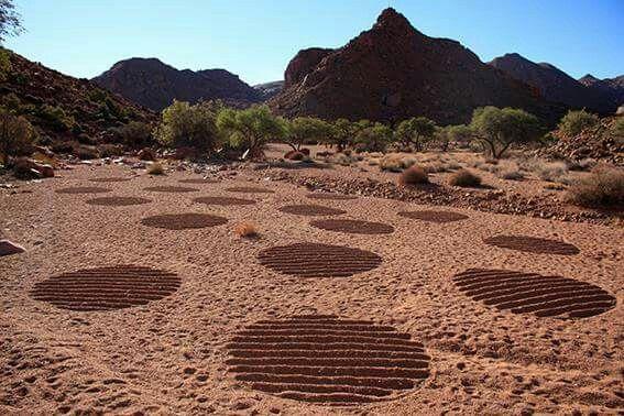 Einfach SPITZE!  Land/Sand Art auf der Namib Desert Lodge