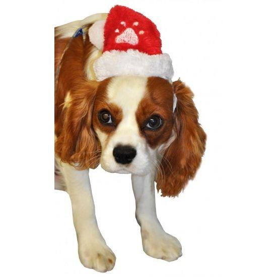 Pluche kerstmutsje met een geborduurd pootafdrukje op de voorzijde. Het mutsje is ongeveer 18 cm groot en heeft een elastiek waarmee deze om gedaan kan worden bij uw huisdier.