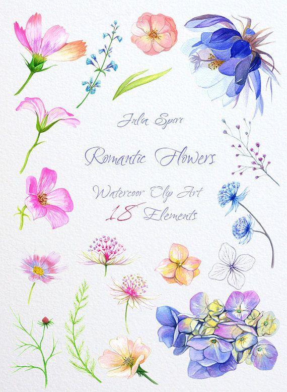 Watercolor Romantic Flowers Clipart Hydrangea Cosmos by JuliaSpiri