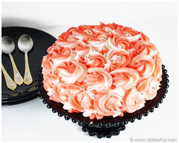 carrot cake 17