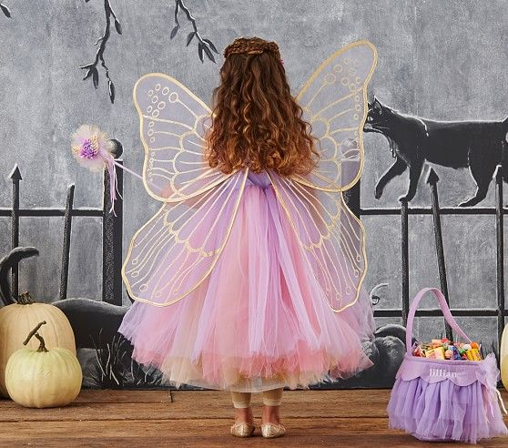 Toddler Butterfly Fairy Costume - Lavender | Pottery Barn Kids