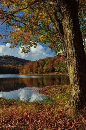 Photography in Virginia