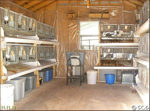 Rabbit Barn Set Up Woodworking Projects Amp Plans