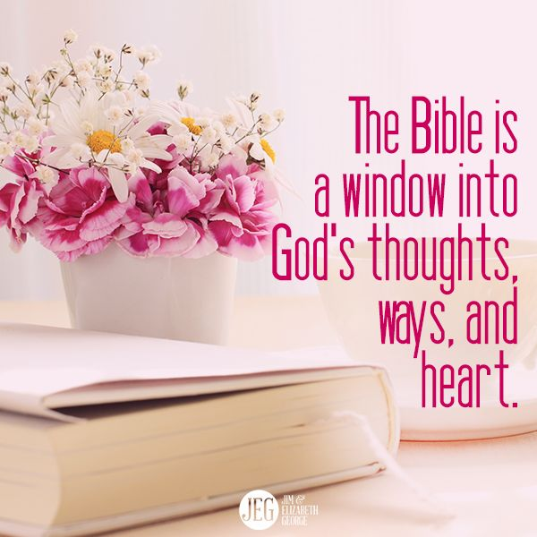 The Bible is a window into God's thoughts, ways, and heart.