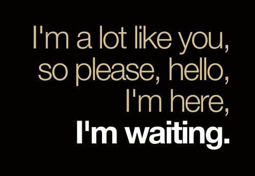 hello. i'm here. i'm waiting. (weezer)