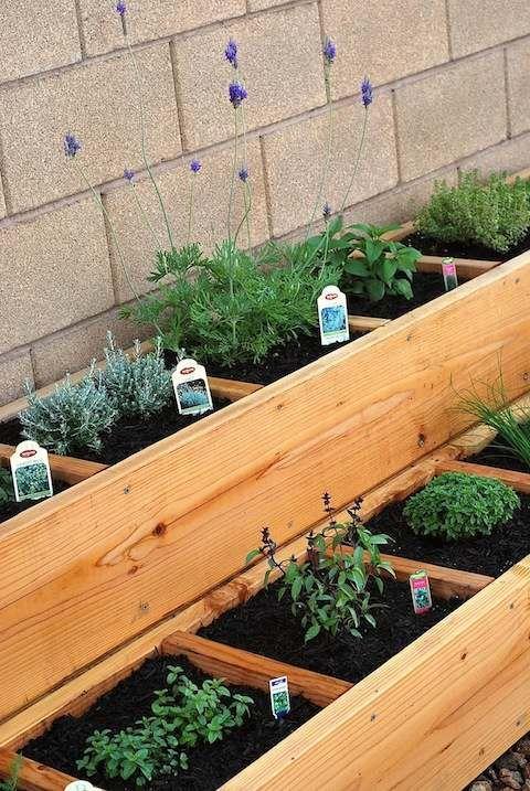 Leuk en plaatsbesparend stadstuintje om veel bloemen en planten op weinig ruimte te kweken. Maximale opbrengst aan bloemen, bloembakken op meerdere niveaus.