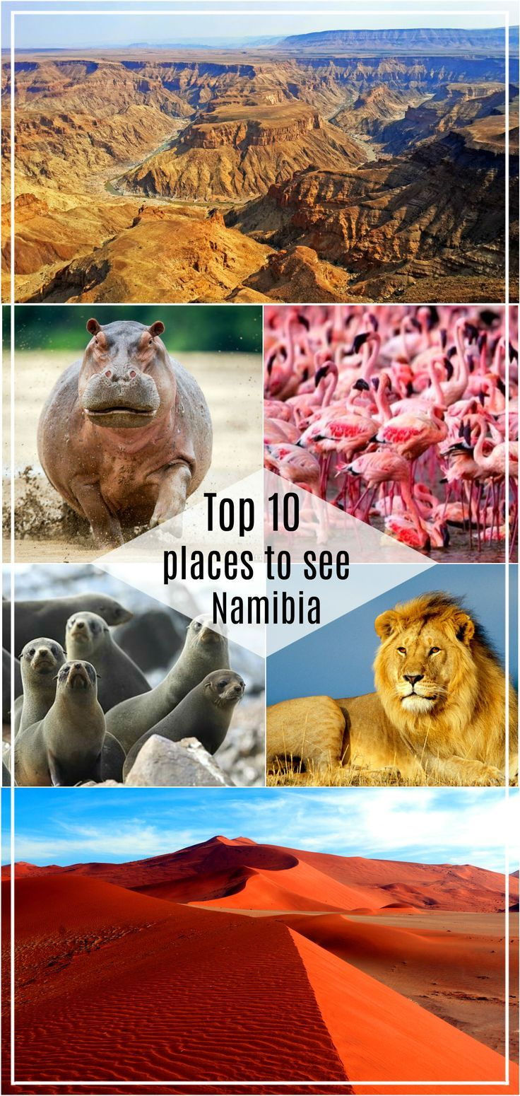10 must see places in Namibia, from the red sand dunes of the Namib desert to the green lush vegetation of Caprivi strip. Including a map of Namibia with Top 10 places on it. Most beautiful places to see in Namibia, how to plan a road tip in Namibia, best