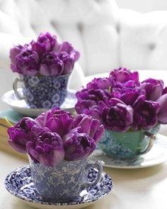 ? flowers in teacups