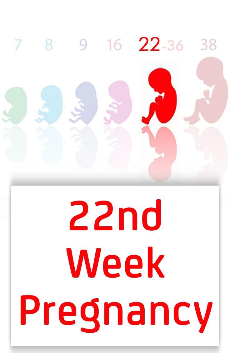 22nd Week Pregnancy – Symptoms, Baby Development, TipsAnd Body Changes