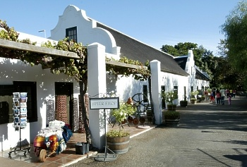 Spier Vineyard in South Africa..... It was amazing