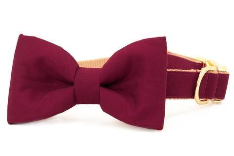 Crimson Bow Tie Dog Collar