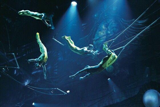 Flying trapeze cirque du soleil