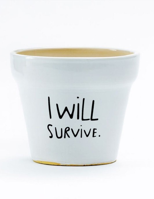 I Will Survive Planter - LOL