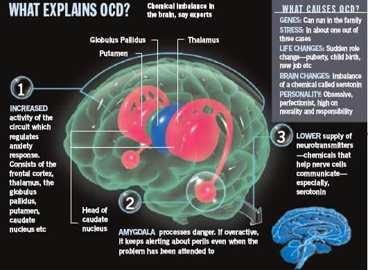 A look at the obsessive compulsive disorder disease