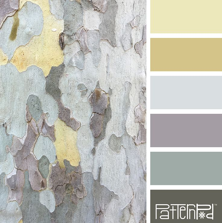 Color Palette: Shades of Yellow, Aqua and Gray. If you like our color inspiration, sign up for our monthly trend letter here! http://patternpod.us4.list-manage.com/subscribe?u=524b0f0b9b67105d05d0db16a&id=f8d394f1bb&utm_content=buffer847d9&utm_medium=social&utm_source=pinterest.com&utm_campaign=buffer