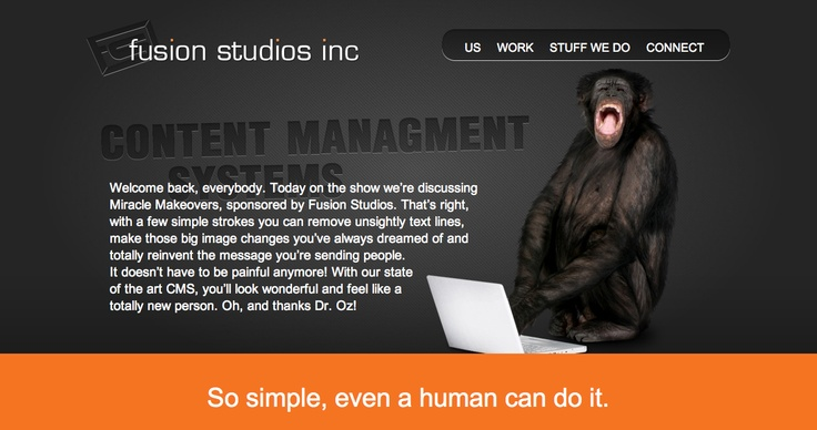Content Management Systems page, Fusion Studios.