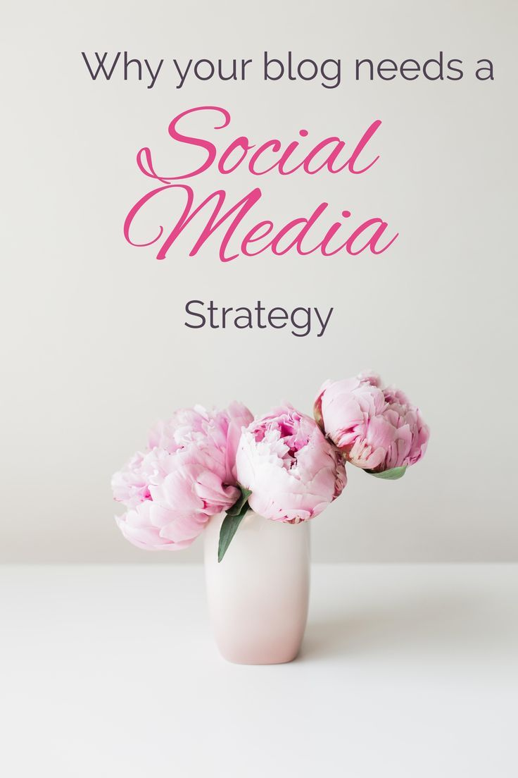 Why your small business or blog needs a social media strategy. Create engagement and interest by posting relevant articles