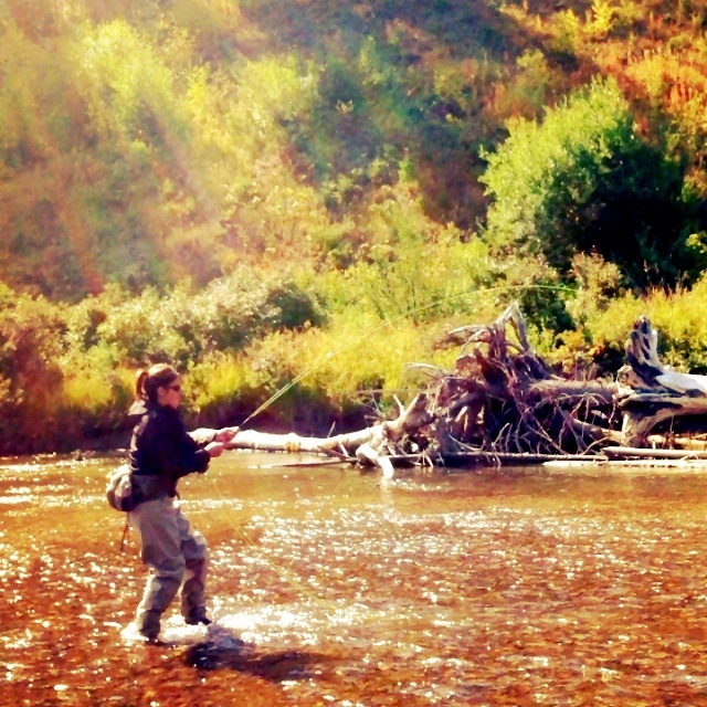 14 best fly fishing the missoula mt area images on for Best fishing areas near me