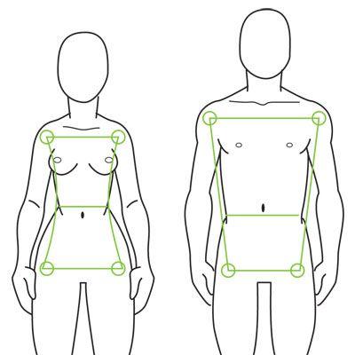 Human Anatomy Fundamentals: Advanced Body Proportions | design.tutsplus #Tutorials #Drawing #Vector