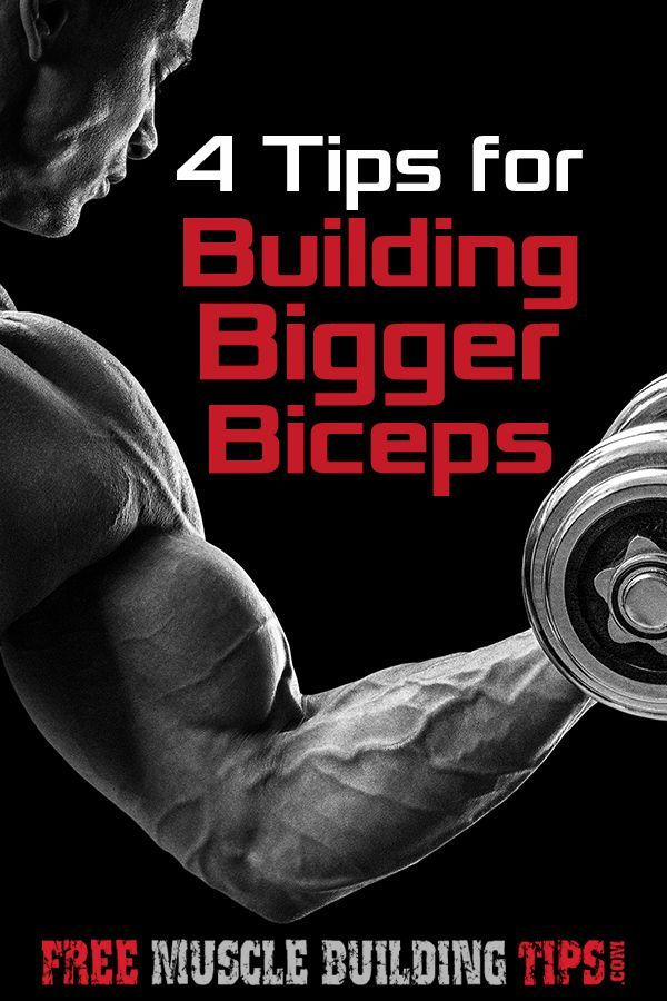 4 Tips To Building Bigger Biceps Body Building