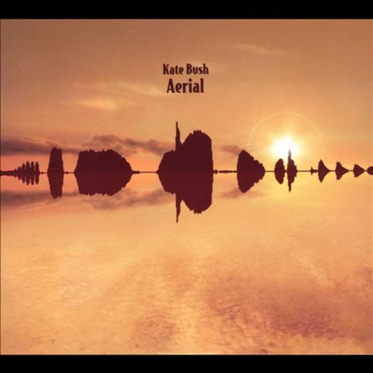 Selling on vFLea.com - Kate Bush - Aerial
