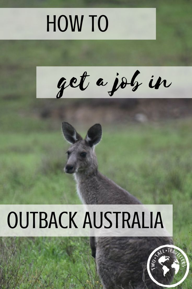 Are you struggling to get outback jobs in Australia? Are you moving here soon and need to know how to secure a position? Have a read to find out how easy it is!