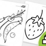 FRUITS+and+Vegetables+Coloring+Pages