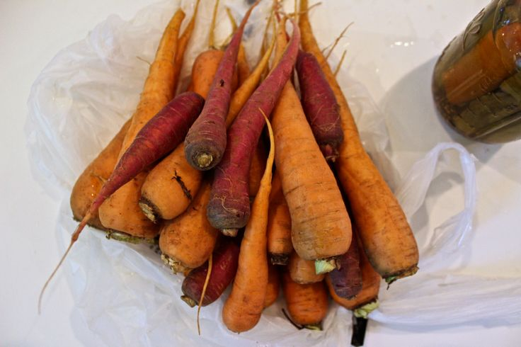 Multi-Colored Carrots, Farm to Table Supper | Oysters & Pearls