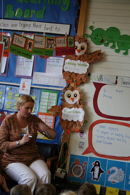 "Objective Owls say ""Learning Intention: We are Learning..."" and ""Success Criteria: Things to Remember..."" Then written in speech bubbles."