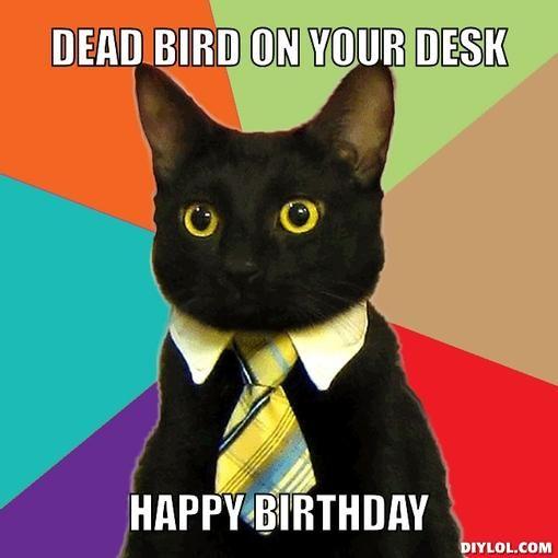 bde0001c39d2dd9270d215e9b94fc9e5 business cat meme a business 17 best business cat images on pinterest business cat meme, funny