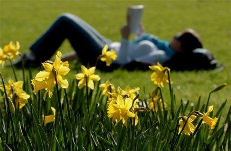 czytanie na słońcu