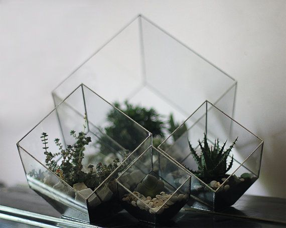 Hey, I found this really awesome Etsy listing at https://www.etsy.com/listing/207140917/geometric-glass-terrarium-cube-modern