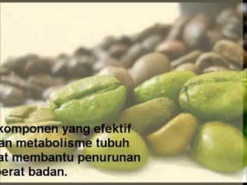 Manfaat Ekstrak Green Coffee Bean Meningkatkan Metabolisme - Panduan dan Manfaat Ekstrak Green Coffee Bean Meningkatkan Metabolisme  1. Terdapat komponen yang efektif meningkatkan metabolisme tubuh sehingga dapat membantu penurunan berat badan.  2. Olahraga Secara Teratur Mempercepat Penurunan Berat Badan  3. Tidur Yang Cukup Menyegarkan Pikiran  4. Makanan Sehat Akan Mendukung Program Diet