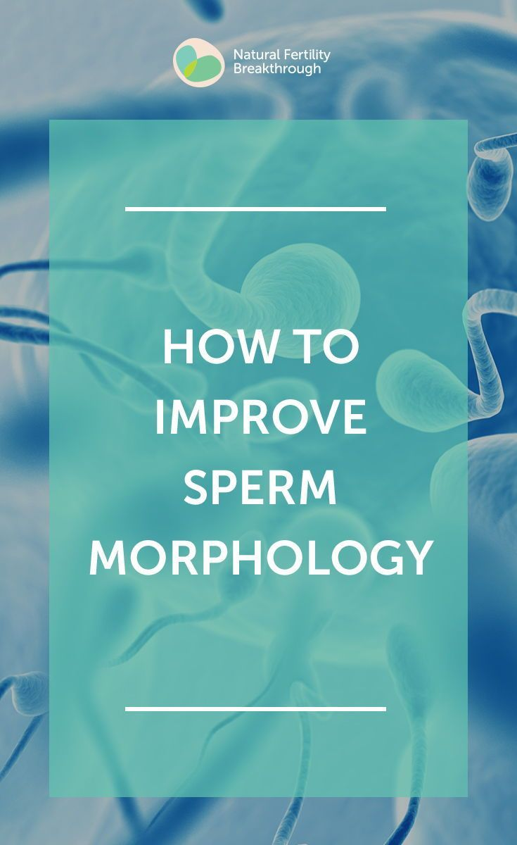 How to improve sperm morphology: the best ways to improve sperm quality in men …   – TTC Tips