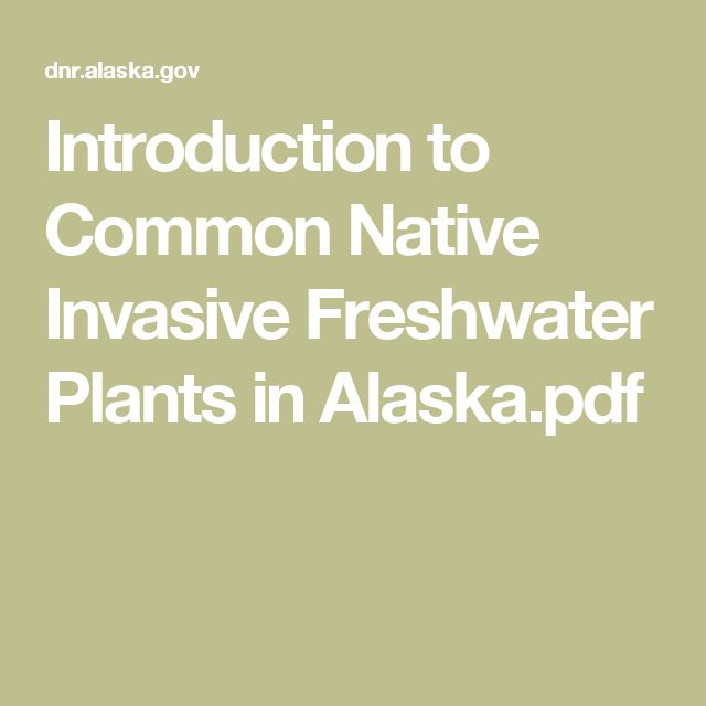 Introduction to Common Native Invasive Freshwater Plants in Alaska.pdf