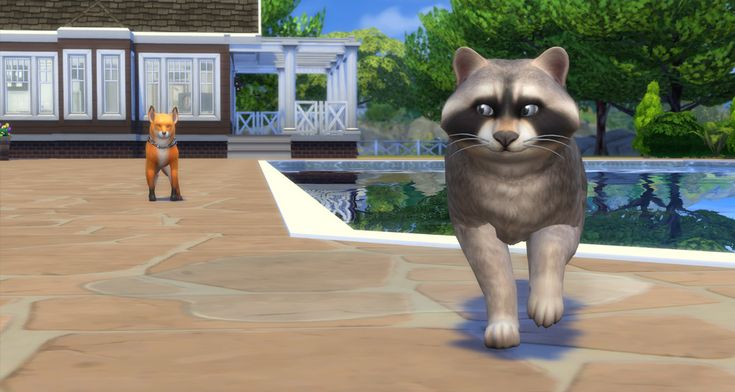 The Sims 4 Review - Fox & Raccoon