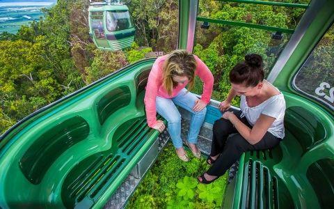 Sobrevuela el bosque lluvioso más antiguo del mundo