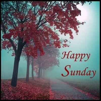 A Fall Happy Sunday...